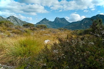 Cradle Mountain from Dove Lake, Tasmania