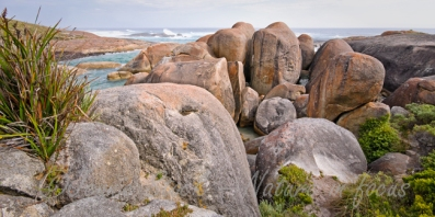 Elephant Rocks in William Bay National Park