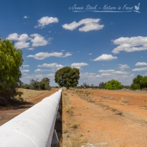 The Goldfields water pipeline on the Great Eastern Highway - the lifesaving water enabled Kalgoorlie and the Goldfields to develop.