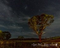 Night sky attempt, Fraser Range Station