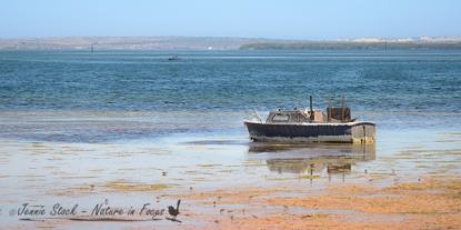 Port Kenny fishing boat