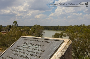 South Australia border - Murray River