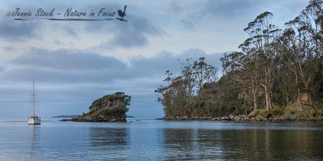Halfmoon Bay, Stewart Island