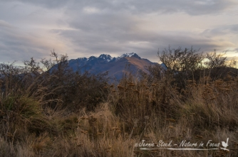 A mountain glimpse from the road down from the Remarkables, on a winter's evening