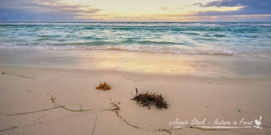 Sunrise at Yanchep Lagoon, north of Perth
