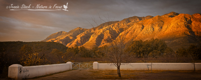 Winter sunrise in Montagu, Western Cape
